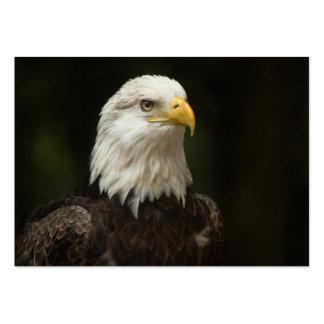 Eagle Business Card Template