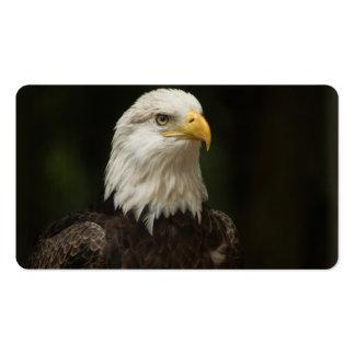 Eagle Business Card