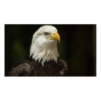 Eagle Business Card Templates