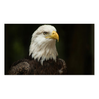 Eagle Business Cards