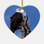 Eagle calvo 9219 ornamentos de reyes