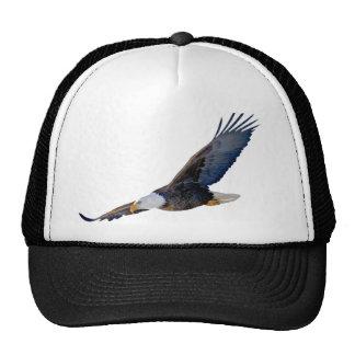 Eagle calvo altísimo gorros bordados