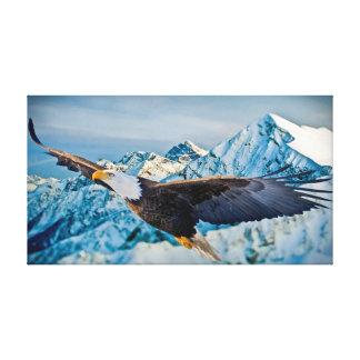 Eagle calvo altísimo lona estirada galerias