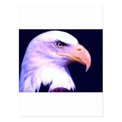 Eagle calvo - American Eagle Postales