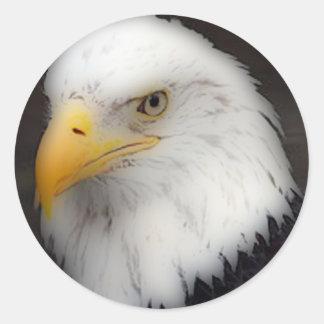 'Eagle calvo americano en Portrait Pegatina Redonda