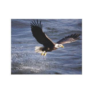 Eagle calvo americano estiró la impresión de la lo impresión en lona