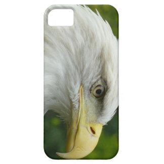 Eagle calvo americano iPhone 5 carcasa