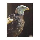 Eagle calvo americano impresión de lienzo