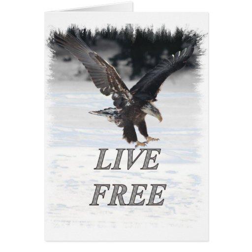 Eagle calvo americano - libre vivo tarjeta de felicitación