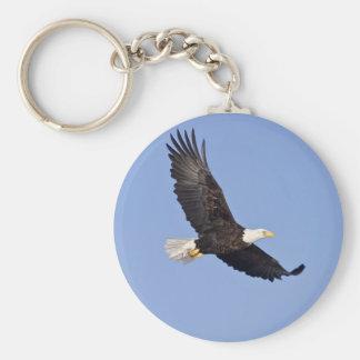 Eagle calvo americano llavero redondo tipo pin