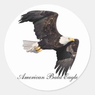 Eagle calvo americano etiqueta redonda