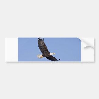Eagle calvo americano pegatina para auto