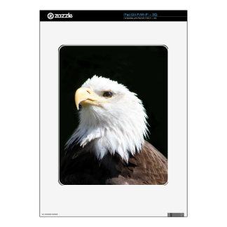 Eagle calvo americano skins para iPad