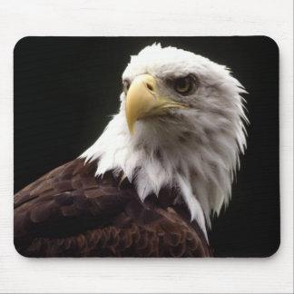 Eagle calvo americano alfombrilla de raton