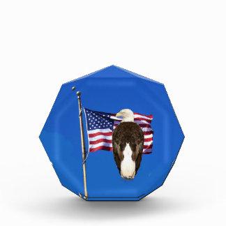 Eagle calvo americano y bandera americana