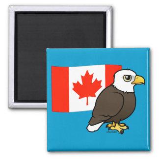 Eagle calvo canadiense imán cuadrado