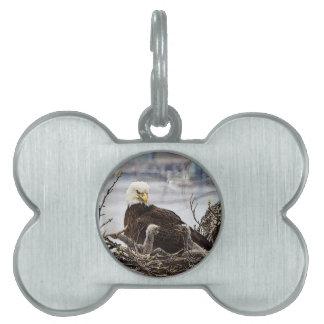 Eagle calvo con eaglets placas de nombre de mascota