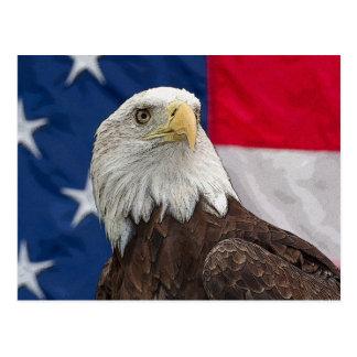 Eagle calvo con la bandera americana tarjetas postales