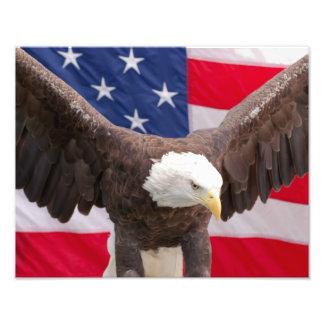 Eagle calvo con la impresión de la bandera fotografía