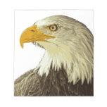 Eagle calvo corrige blocs de papel