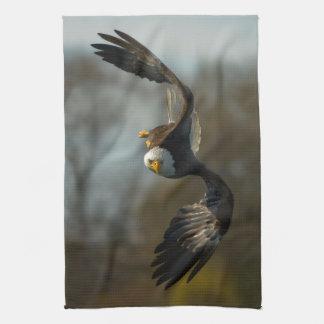Eagle calvo en la caza toallas de cocina