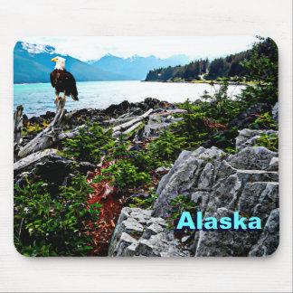 Eagle calvo en la costa de Alaska Alfombrillas De Raton