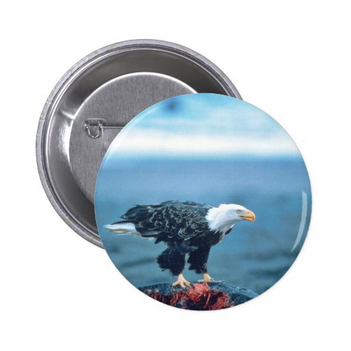 Eagle calvo en la res muerta de la ballena pin redondo 5 cm