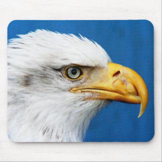 Eagle calvo en la reserva del nacional de Juan Hei Alfombrillas De Raton