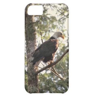 Eagle calvo en un árbol funda para iPhone 5C