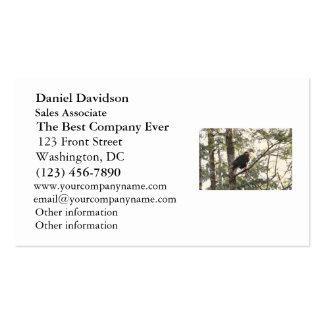 Eagle calvo en un árbol tarjetas de visita