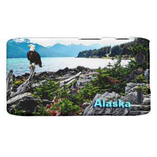 Eagle calvo encaramado en la costa de Alaska Motorola Droid RAZR Fundas