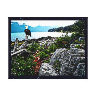 Eagle calvo encaramado en la costa de Alaska Impresiones En Lona Estiradas