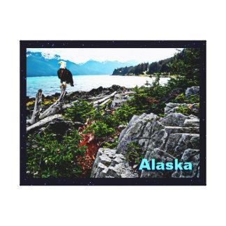 Eagle calvo encaramado en la costa de Alaska Impresiones En Lona