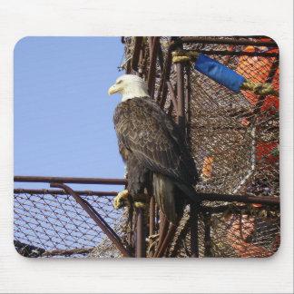 Eagle calvo encaramado en los potes de cangrejo alfombrillas de ratones