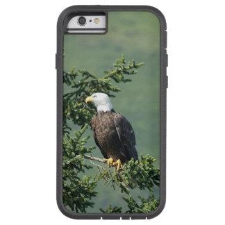 Eagle calvo funda para  iPhone 6 tough xtreme