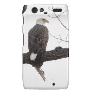 Eagle calvo droid RAZR carcasas