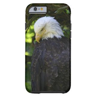 Eagle calvo funda de iPhone 6 tough