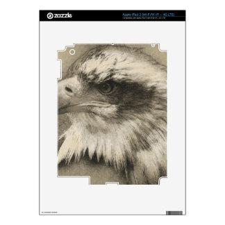 Eagle calvo glorioso Setch iPad 3 Skins