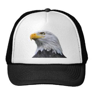 Eagle calvo gorros