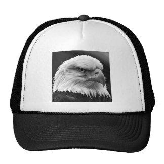 Eagle calvo gorros bordados