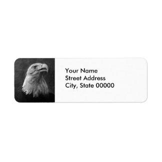 Eagle calvo grafito dibujado mano etiqueta de remite