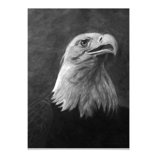 Eagle calvo grafito dibujado mano comunicados personales