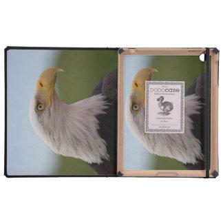 Eagle calvo iPad cárcasa