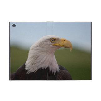 Eagle calvo iPad mini protectores