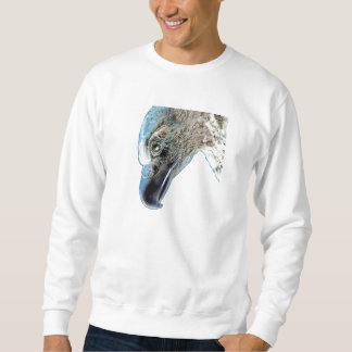 Eagle calvo jersey
