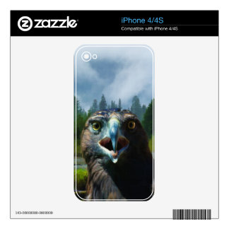 Eagle calvo joven y río de Alaska brumoso Calcomanías Para iPhone 4