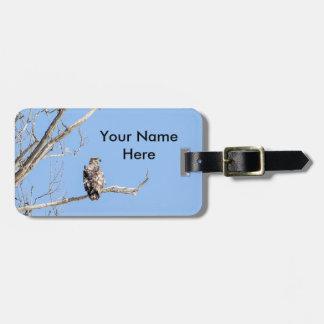 Eagle calvo juvenil etiquetas de maletas