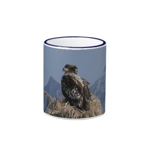 Eagle calvo juvenil por la orilla taza de café