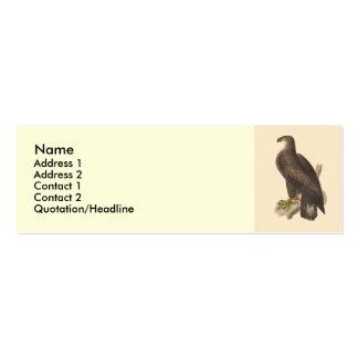 Eagle calvo (leucocephalus de Haliaetos) Tarjetas De Visita Mini