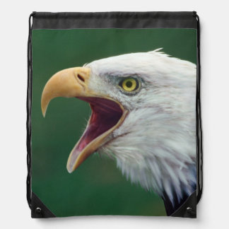 Eagle calvo (leucocephalus del Haliaeetus) Mochila